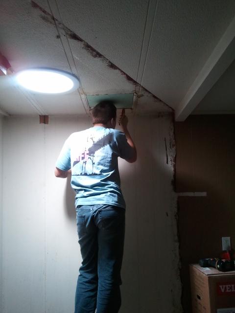 Dylan sealing ceiling