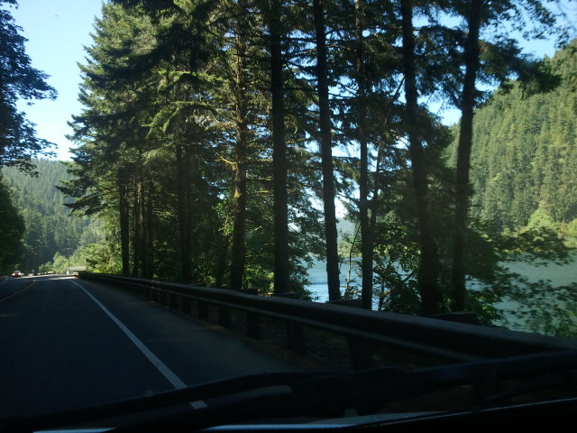 Drive along Umpqua River