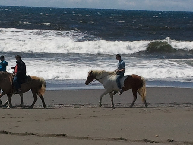 Dylan on horse on beach